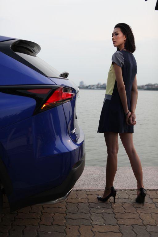 Lexus NX200t 4