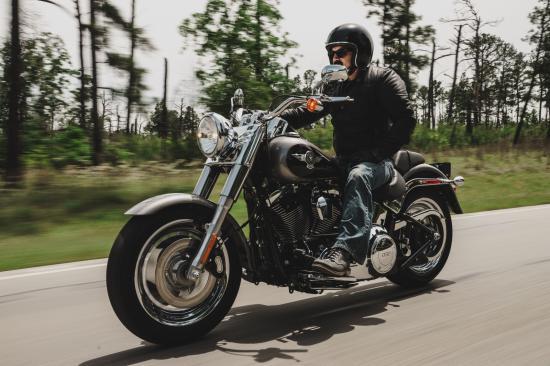 xe Harley-Davidson 3