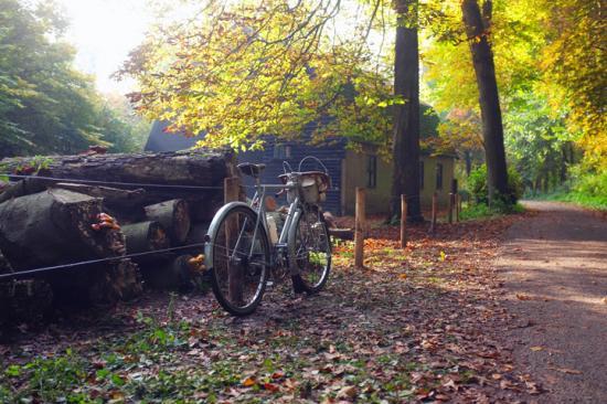 Cuộc sống bình yên qua con mắt người mê… xe đạp 9