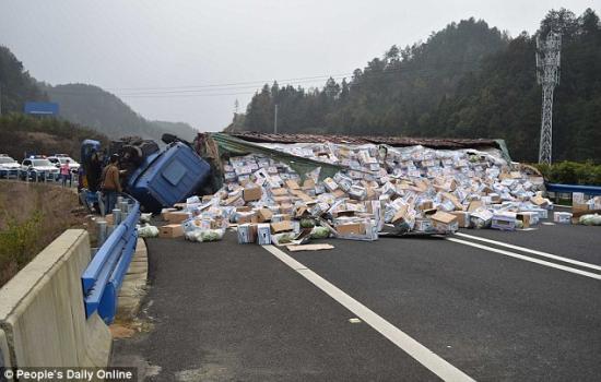 Cảnh sát Trung Quốc đuổi bắt gà trên cao tốc 1