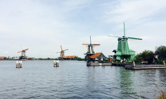 Đường sắt Hà Lan chính thức chạy bằng năng lượng từ gió 1