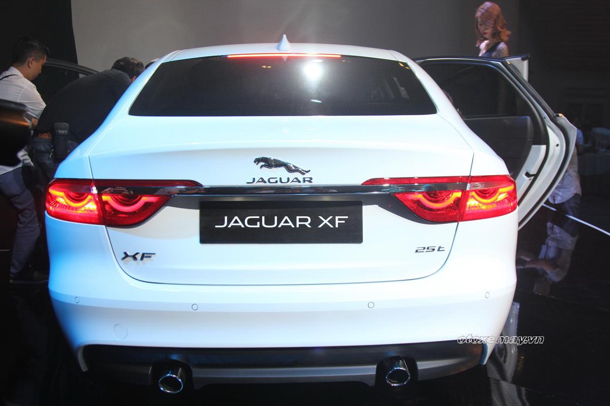 Khám phá Jaguar XF 2016 vừa ra mắt tại Việt Nam_6
